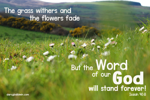 The moss withers and the flowers fade, but the Word of our God will stand forever. DJB Fonts